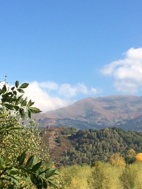 pyrenean foothills