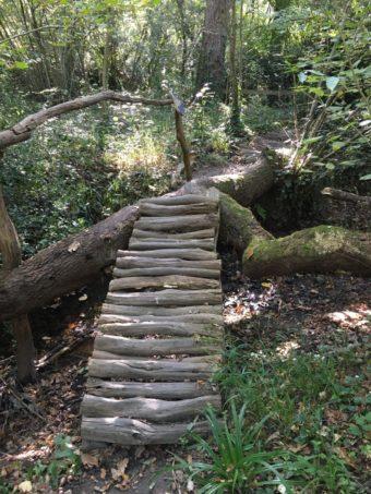 barefoot trail log ladder