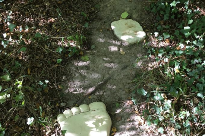 barefoot trail giant steps