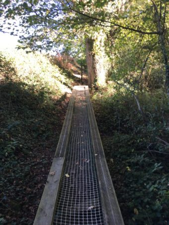 barefoot trail mesh