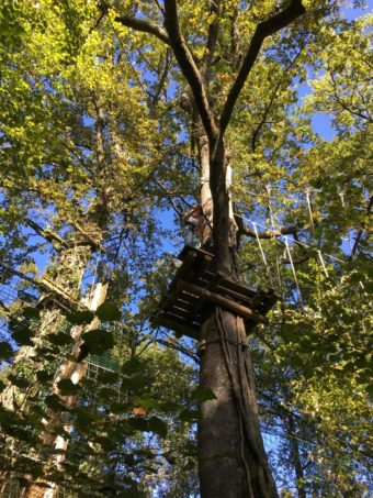 high ropes tree station