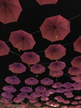 Pau umbrella display in the dark