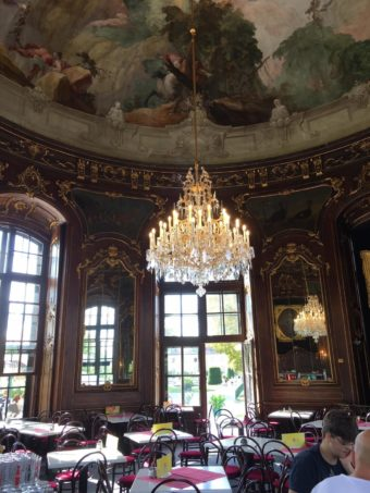 Schoenbrunn Zoo cafe